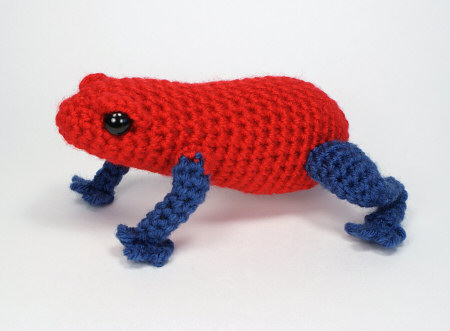 poisondartfrog1